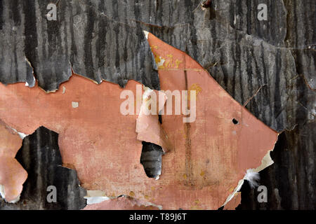 Paint peeling off plastered wall - Stock Image