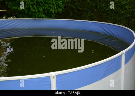 lost place blue-white pool background, unkempt frame swimming pool with green colored water due to algae and dirt - Stock Image