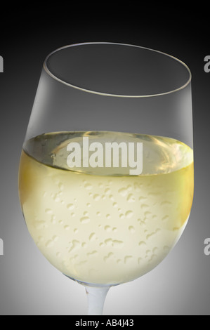 A glass of white wine - Stock Image