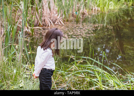 Adorable four years old cute little girl stands near a pod or lake in a sunny day - Stock Image