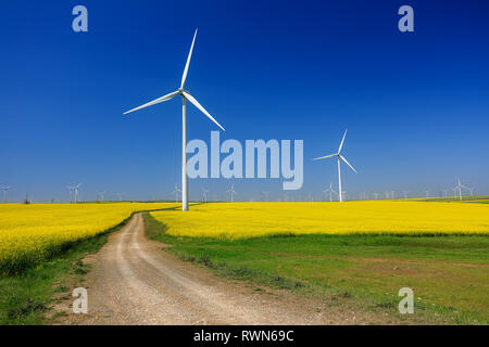 Wind turbines. Fields with windmills. Rapeseed field in bloom. Renewable energy. Protect the environment. Dobrogea, Romania - Stock Image