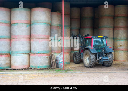 Red tractor is handling round hay bales that are neatly stacked in a barn - Stock Image