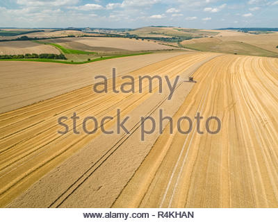 Harvest aerial landscape of combine harvester cutting summer wheat field crop on farm - Stock Image