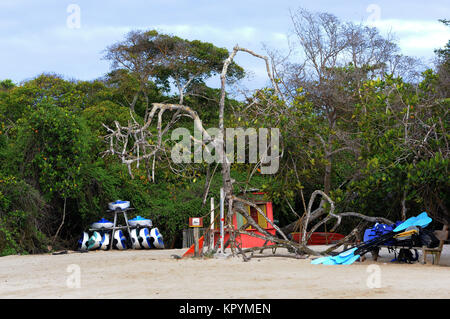 Kayaks for tourists' use are stacked in front of mangrove trees on the white sandy beach. Playa Isabela, Puerto - Stock Image