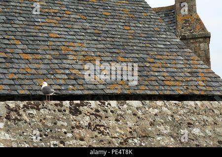 Tour Boucle on the Ramparts, Le Mont Saint Michel, Manche, Normandy, France - Stock Image