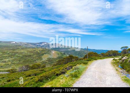 The walking track to Kosciuszko peak, in Kosciuszko National Park, NSW, Australia. Nature background with plants and vegetation. - Stock Image