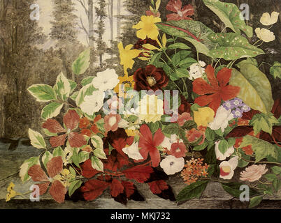 Flowers in a Wood - Stock Image