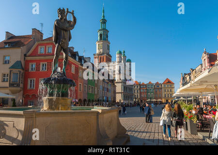 Poznan Poland, view across the Market Square (Stary Rynek) in Poznan with the Apollo Fountain (left) and Renaissance Town Hall in the distance, Poland - Stock Image