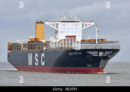 MSC Perle - Stock Image