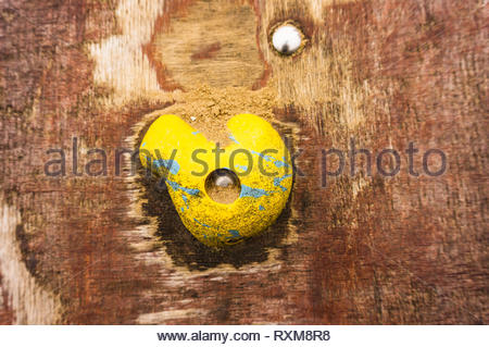 Yellow hand grip with sand on a wooden climb wall. - Stock Image