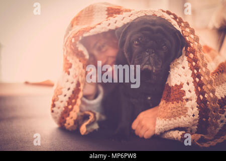 Caucasian happy woman hidden under the blanket with her black pug dog. Love and friendship at home - Stock Image