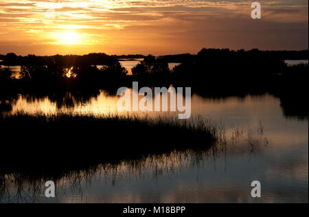 Red sunset over the marsh. Virginia, USA - Stock Image