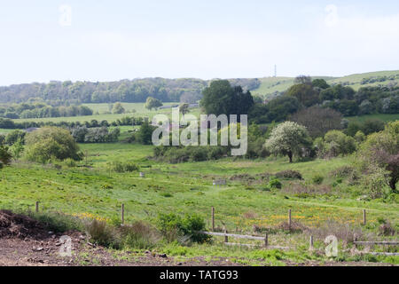 The countryside in springtime around Godshill, Isle of Wight - Stock Image