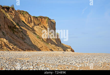 A view of steep unstable cliffs composed of soft glacial sands on the North Norfolk coast at East Runton, Norfolk, England, United Kingdom, Europe. - Stock Image