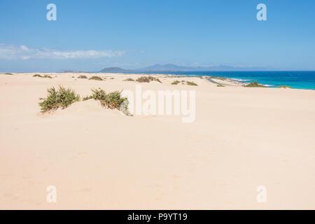 Landscape of Fuerteventura, Canary Islands - Spain. - Stock Image