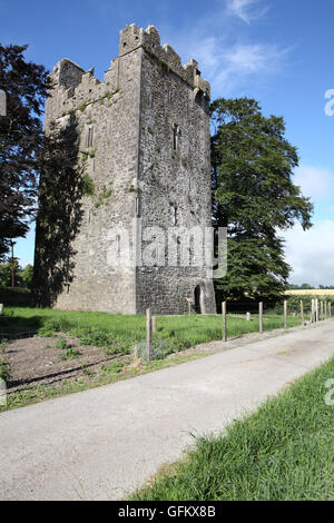 Burnchurch castle, A 15th century Norman tower house, situated in County Kilkenny, Ireland - Stock Image