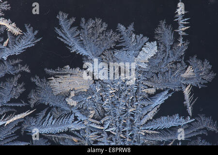 Frost traceries growing on a window. - Stock Image