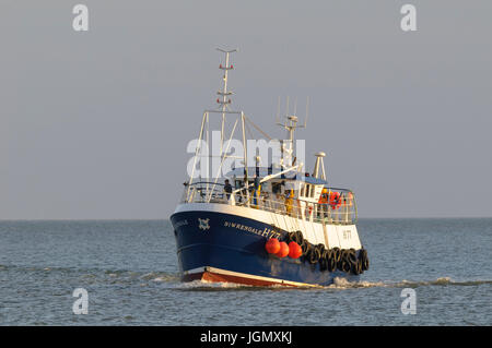 A small fishing boat named 'Siwrengale' returning to Bridlington harbour in early evening light. Bridlington, - Stock Image