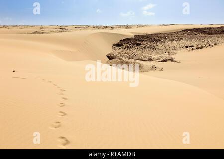 Footprints on sand dunes on empty beach. Praia de Chaves, Rabil, Boa Vista, Cape Verde Islands, Africa. - Stock Image