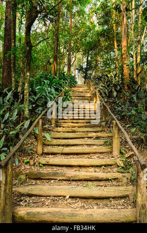 staircase made with wooden steps - Stock Image