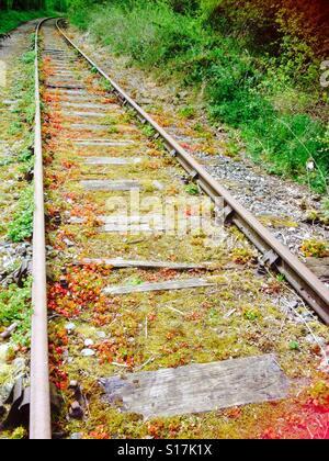 Tracks of life. - Stock Image