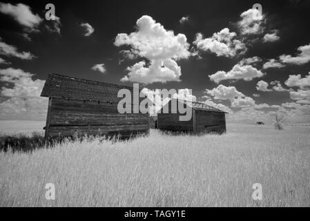 Graneries and clouds Oyen Alberta Canada - Stock Image