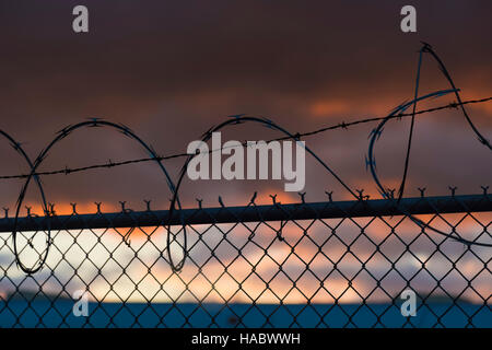Black barb razor wire atop chain link fence sunset - Stock Image