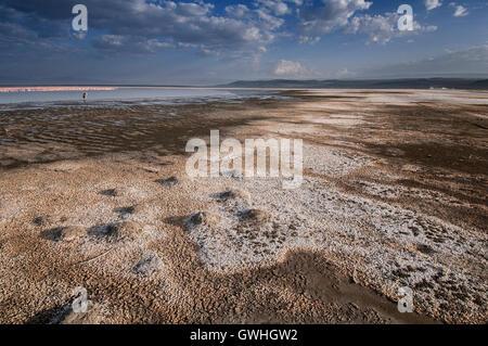 Landscape of Lake Nakuru, Kenya. Africa. - Stock Image