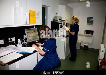 Two Trainee Veterinary Nurses in a Practice Laboratory - Stock Image