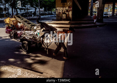 Handcart puller, known as carroceiro, street worker commonly found at Rio de Janeiro streets, collects all kinds of stuff for selling or exchanging. The man has 3 beautiful dogs as companions. - Stock Image