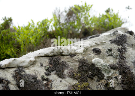 Distinctive rocks on the mountainsides of Glen Nevis in the Scottish Highands - Stock Image