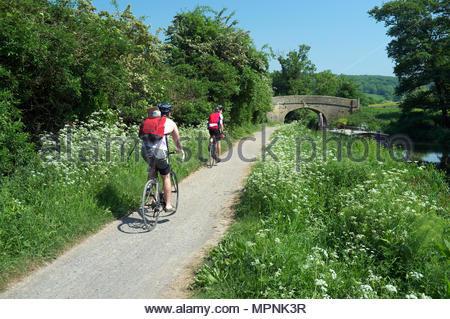 Cyclists travel alongside the Kennet & Avon Canal near Claverton, Bath, UK. - Stock Image