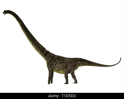 Mamenchisaurus youngi was a herbivorous sauropod dinosaur that lived in China during the Jurassic Period. - Stock Image