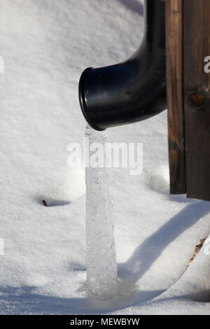 A stream of ice is emerging from a roof drain pipe on a cold winter day. - Stock Image
