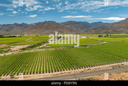 Hex River Valley, Western Cape Province, South Africa. - Stock Image