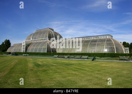 The Palm House, Kew Gardens, London, UK. - Stock Image