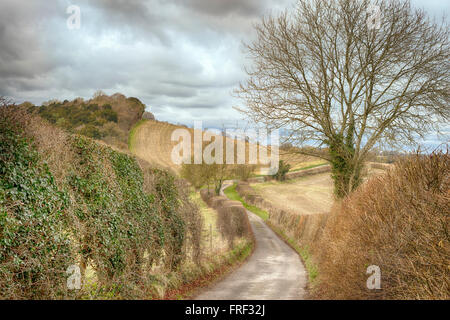 Lane near Saunderton. Saunderton is a village in the Chiltern Hills, Buckinghamshire, England. - Stock Image
