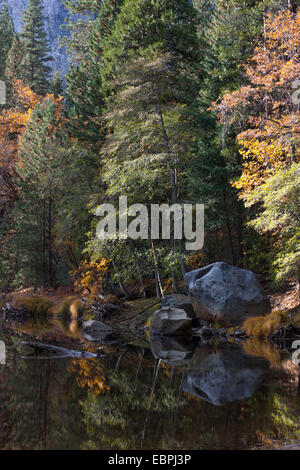 Fall scene on the Merced River. Yosemite Valley, Yosemite National Park, Mariposa County, California, USA - Stock Image