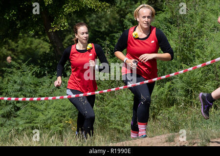Cross country obstacle course running - Stock Image