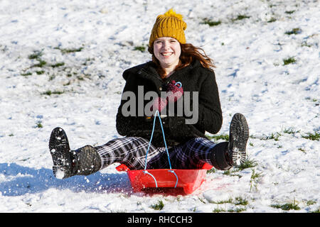Chippenham, Wiltshire, UK. 2nd February, 2019. A woman enjoying the snow before it thaws is pictured in a local park in Chippenham as she slides down a hill on a sledge. Credit: Lynchpics/Alamy Live News - Stock Image