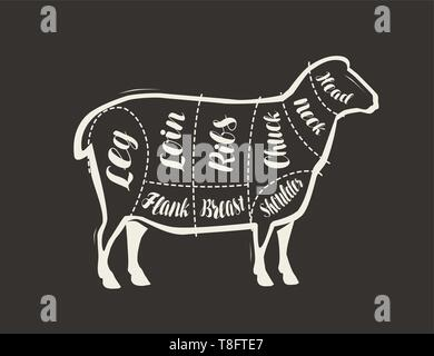 Cut of lamb meat drawn on the blackboard. Menu for restaurant or butcher shop. Vector - Stock Image