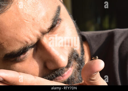 Young man entomologist observing insects in glass vile and trying to identify it for his insect specimen collection during a bright summer. - Stock Image
