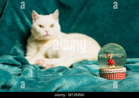 Crystal snowball with a mouse in it, and a white female cat lying on an aquamarine blanket in a blurry background. - Stock Image