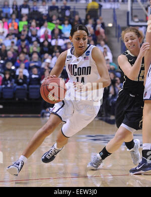 Storrs CT USA -- NCAA Division I Women's Basketball Championship. UCONN's Bria Hartley drives to the hoop - Stock Image