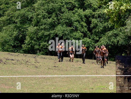 A mixed group of mud runners in orange tops - Stock Image