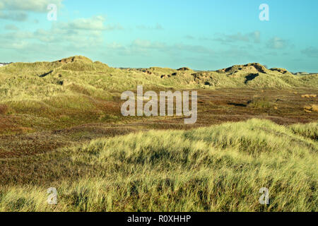 Aberffraw dunes on the south coast of Anglesey is one of the most extensive sand dune systems in the UK. - Stock Image