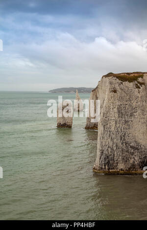Old Harry Rocks, Isle of Purbeck, Dorset - Stock Image