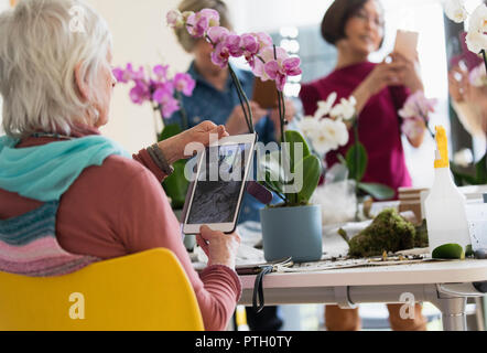 Active senior woman with digital tablet photographing orchid in flower arranging class - Stock Image