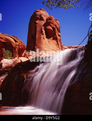 Waterfall in Coyote Gulch, Escalante River tributary, Glen Canyon National Recreation Area, Utah. - Stock Image