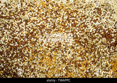 Selection of Brown Linseeds Golden Linseeds Pearl Barley and Sunflower Seeds Superfoods - Stock Image